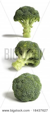 Three Sticks of Broccoli, Hi Res.