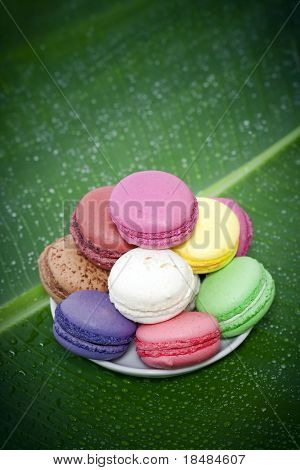 Pile of colorful French Macaroons with green banana leaf background