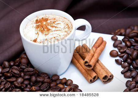 Frothy cappuccino coffee in plate with cinnamon sticks and coffee beans