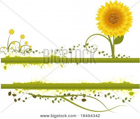 Vector- Floral grunge with sunflower, vines and grass. Copy space for text.