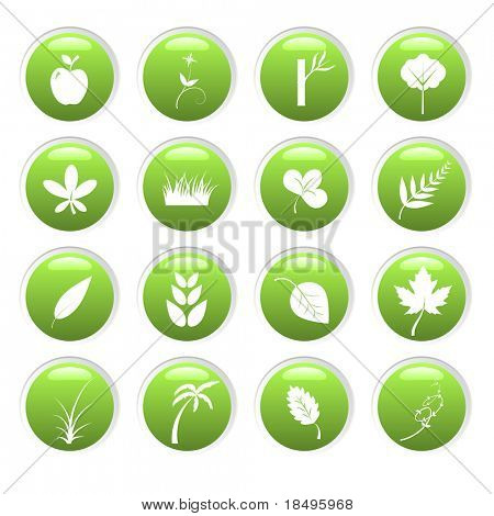 Raster - Green environment 3D glassy icons with nature theme