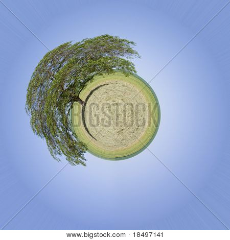 Lone tree green planet or world with bright blue clear sky