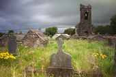 picture of irish moss  - Irish graveyard at Dingle peninsula old ruins of church long exposure gives moody feel caused by blurry vegetation and clouds - JPG