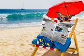 Dog Siesta On Beach Chair poster