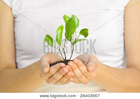 woman holding a plant between hands on white