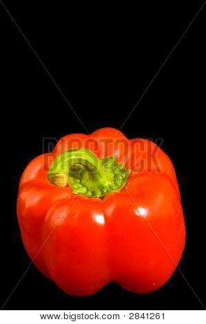 Single Red Bell Pepper