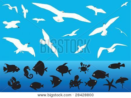 Some silhouettes of seagulls flying and sea animals