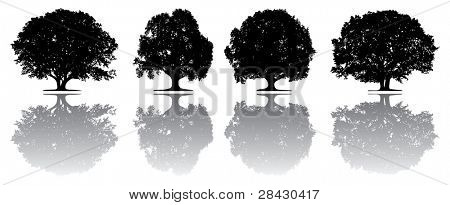 Vector trees - This image is a vector illustration and can be scaled to any size without loss of resolution.