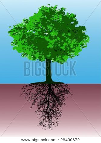Tree with roots - This image is a vector illustration and can be scaled to any size without loss of resolution