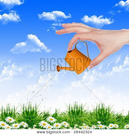 Human hand with orange watering pot watering green grass
