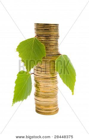 Pile Of Coins With Germinating Leaves.
