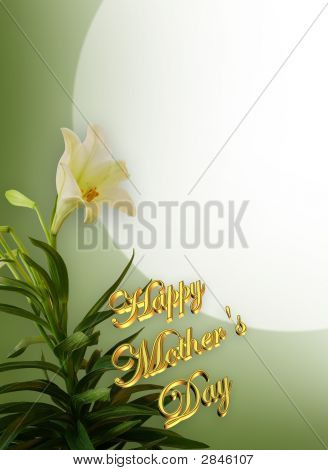 Mothers Day White Lily Card