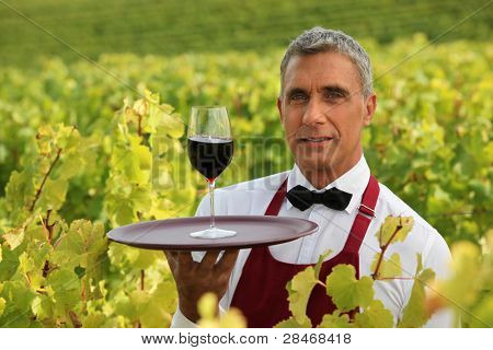 Man serving a glass of red wine in the middle of a vineyard