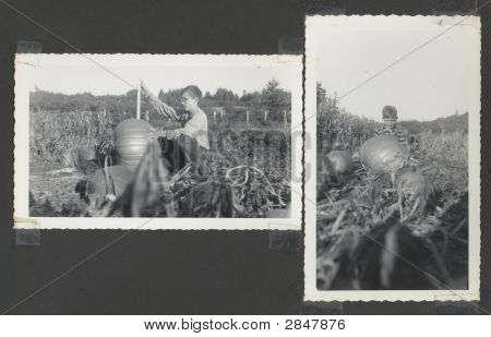 Vintage 1930 Kids and Pumpkins On The Farm