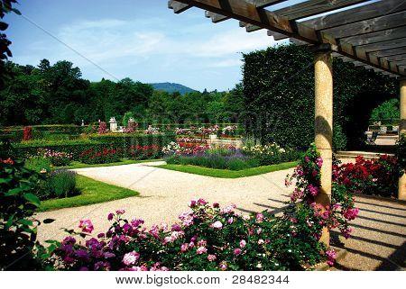 Rose Garden Baden-Baden