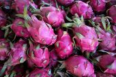 dragon fruit. Asian dragon fruit.  poster