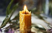 Burning Candle Made Of Natural Wax Burns Standing Among Plants And Flowers In The Night poster