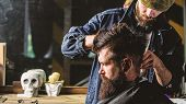 Hipster Client Getting Haircut. Barber Styling Hair Of Brutal Bearded Client With Clipper. Barber Wi poster