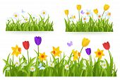 Spring Grass Border With Early Spring Flowers And Butterfly Isolated On White Background. Illustrati poster