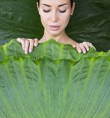 The Girl Is Covered With Leaves. Young Womans Face Surrounded By Tropical Leaves. poster