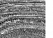 Black And White Urban Rough Texture Vector.  Place Over Any Object Create Black Grunge Effect.  Dist poster