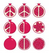 Vector Set Of Stylized Pomegranate Cuts And Whole Pomegranates, Vegetarian Diet Icons poster