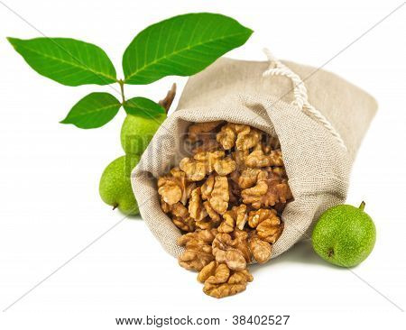 Sack Of Purified Walnut And Green Walnut Fruit