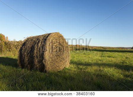 Fardos de palha no campo de outono
