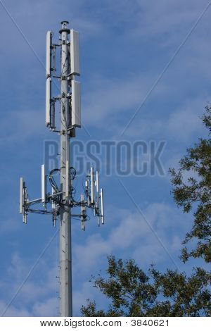 Cell Tower With Tree