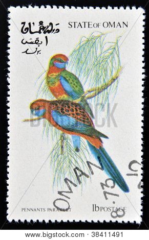 OMAN - CIRCA 1973: A stamp printed in Oman dedicated to exotic birds shows pennants paraheet circa 1
