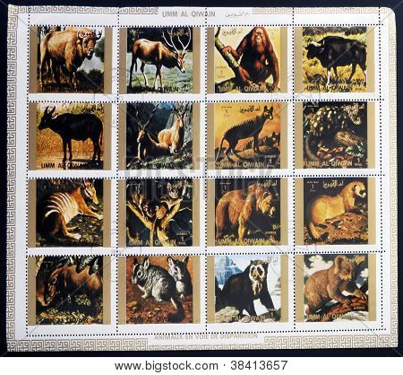 UMM AL QIWAIN - CIRCA 1973: Collection stamps printed in Umm al Qiwain shows animals dying out circa