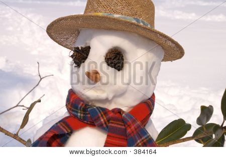 Styling Snowman