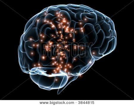 Active Gehirn