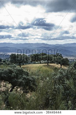 Sierra La Jayona Outskirts