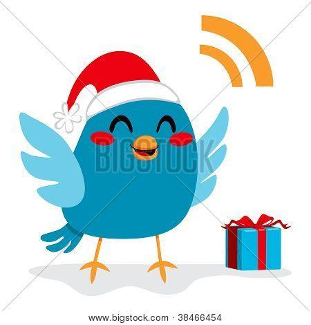 Santa Claus Bird