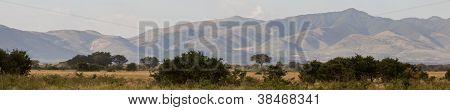 Mountains And Savanna