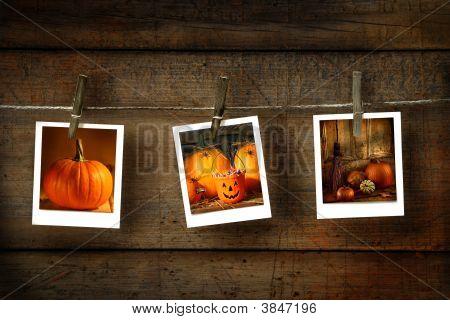 Fotos de Halloween en madera apenado