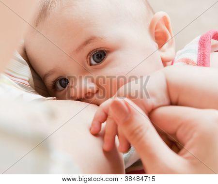 Mama alimentación bebé