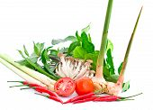 thai herb for Spicy Shrimp Soup prepare on white background poster