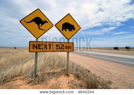 Kangaroo, Wombat  Warning Sign Australia