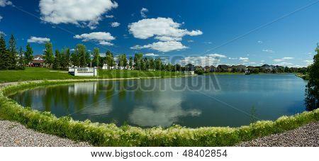 Beautiful Pond In Expensive Neighborhood