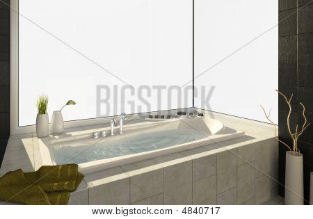 Bathtub With Views