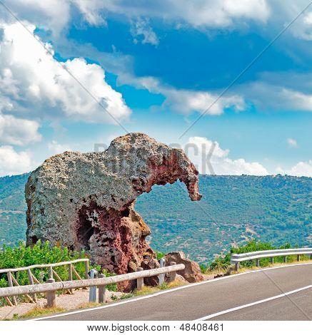 Elefant Rock