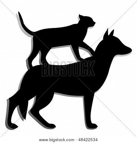 Dog,cat