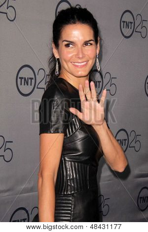 LOS ANGELES - JUL 24:  Angie Harmon arrives at TNT's 25th Anniversary Party at the Beverly Hilton Hotel on July 24, 2013 in Beverly Hills, CA