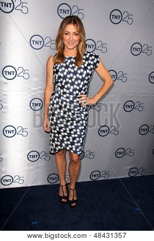 LOS ANGELES - JUL 24:  Sasha Alexander arrives at TNT's 25th Anniversary Party at the Beverly Hilton Hotel on July 24, 2013 in Beverly Hills, CA