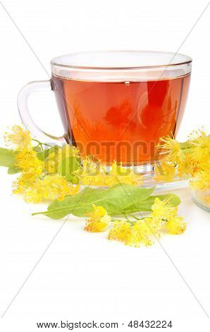 Cup With Linden Tea
