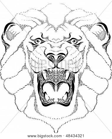 Lion Head Roaring