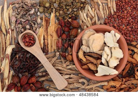 Traditional chinese herbal medicine ingredients over hessian background.
