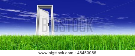 High resolution green, fresh and natural 3d conceptual grass over a blue sky banner background, a opened door at horizon